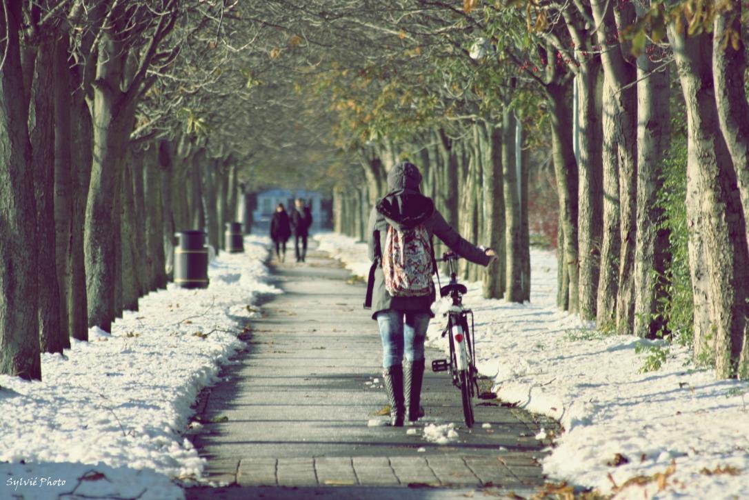in bicicletta sulla neve a copenaghen